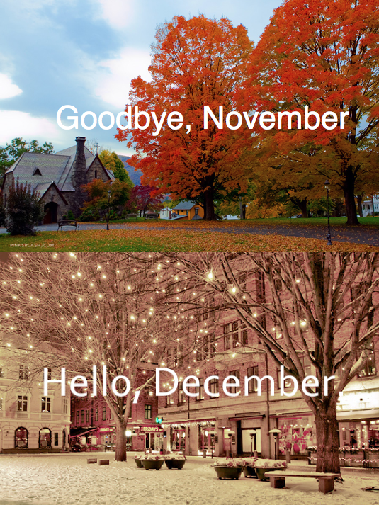 good bye end of month fall winter happy holidays thanksgiving christmas end of year year-end autumn colored leaves tree snow lights thanks thankful new month
